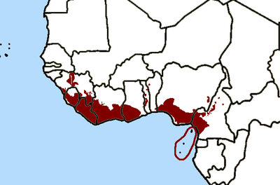 Guinean hotspot.png
