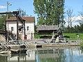 Héron cendré au barrage de Noisiel 3.jpg