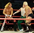 HBK-and-Flair-backhand-chops.jpg
