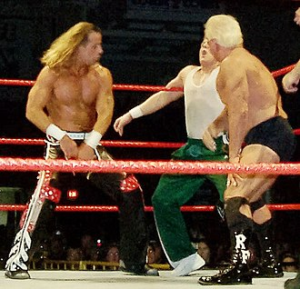 Professional wrestling attacks - Shawn Michaels and Ric Flair delivering knife edge chops to Mikey