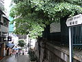 HK Sheung Wan Hollywood Road view north 樓梯街 Ladder Street sign.jpg
