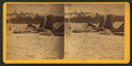 Hallowell coal sheds, from Robert N. Dennis collection of stereoscopic views.png
