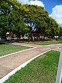 Hamacas y árboles plaza MRA.JPG