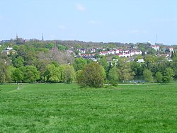 Hampstead Heath 7.JPG