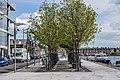 Hanover Quay - Dublin Docklands - panoramio (4).jpg