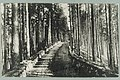 Harjutie, Harjutien korkea osa, Tarkemmin määrittelemätön paikka, 1910s PK0125.jpg