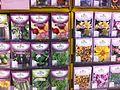Heirloom Seed Packets.jpg
