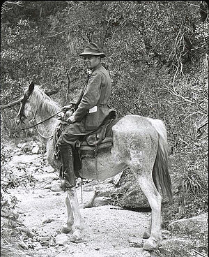 Henry Chandler Cowles - Henry C. Cowles in the Santa Catalina Mountains, Arizona, 1913