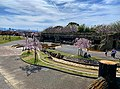 Higasinakatomi-Sakuradutumi-Park.jpeg