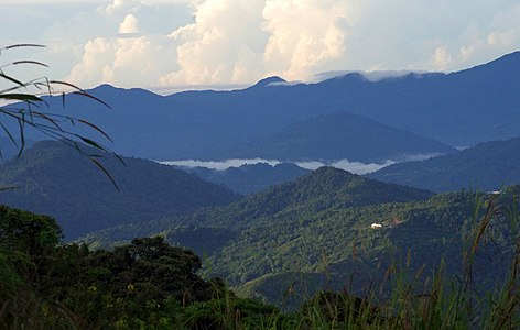 Hill and montane tropical cloud forests between Kinabalu Nationalpark and Crocker Range UNESCO-MAB Biosphere Reserve.jpg