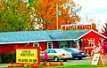 Hillcrest Orchard ^ Christmas Tree Farm - panoramio.jpg