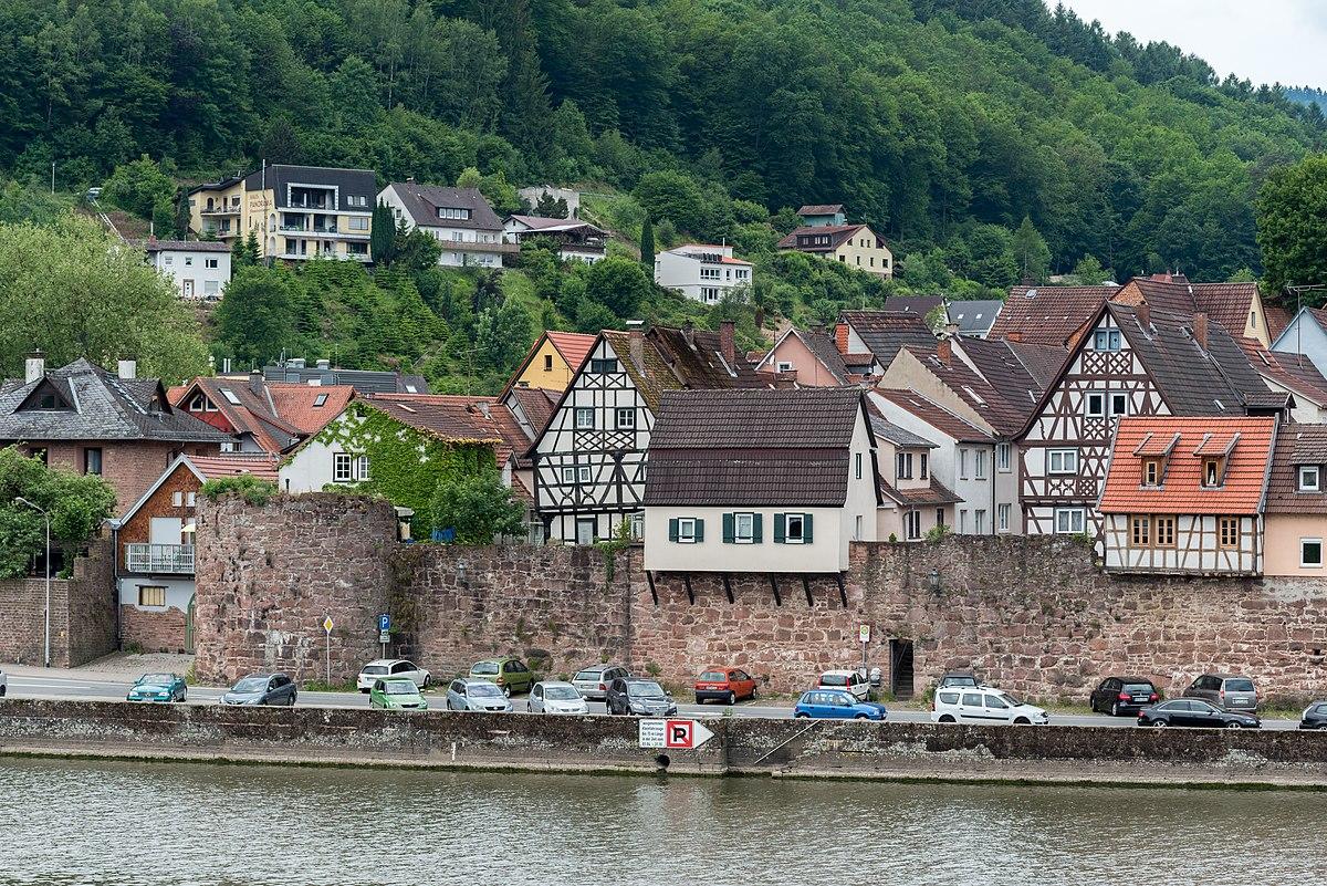 Nutten aus Hirschhorn (Neckar)