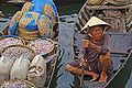 Hoi An Fish Market, Vietnam).jpg