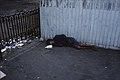 Homeless, sleeping rough in Romania.jpg