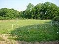 Horse Paddocks - geograph.org.uk - 183335.jpg