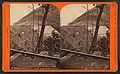 Horse Shoe Bend, from Glen White Road, by R. A. Bonine.jpg