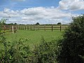 Horse paddocks at East Green - geograph.org.uk - 1460978.jpg