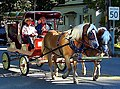 Horse ride - panoramio (1).jpg