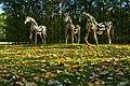 Horses (15778644445).jpg