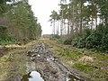 Houghton Moor - geograph.org.uk - 140255.jpg