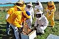 INTA - productoras apícolas (1).jpg
