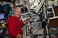 ISS 63 Hurley works on science hardware.jpg