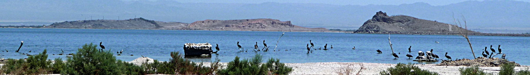 The Salton Sea which dominates the landscape of Imperial County.