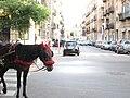 In Palermo - panoramio.jpg