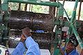 Income generating project in Rutshuru, UNDP-IMG 3493.jpg