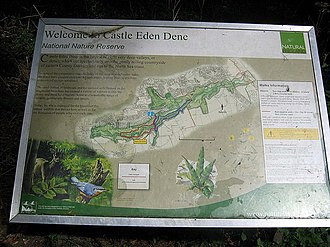 Castle Eden Dene - Image: Information board at entrance to Castle Eden Dene geograph.org.uk 1473198