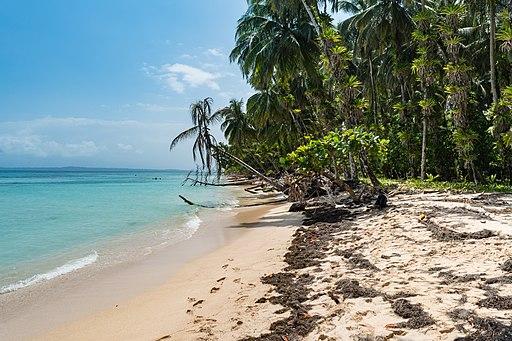 Insel Zapatilla Bocas del Toro (27089053141)
