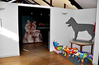 Monts de Gueret Animal Park - Inside the museum