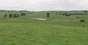 Northern Tablelands - Livestock grazing country, Irish Town, Walcha.