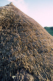 An Iron Age thatched roof, Butser Farm, Hampshire, United Kingdom
