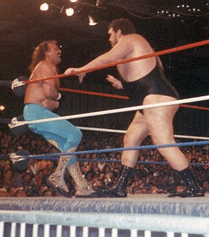 André the Giant - André feuded with Jake Roberts based on André's fear of snakes