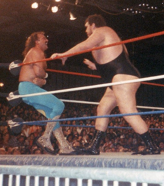 Archivo:Jake Roberts and Andre.jpg