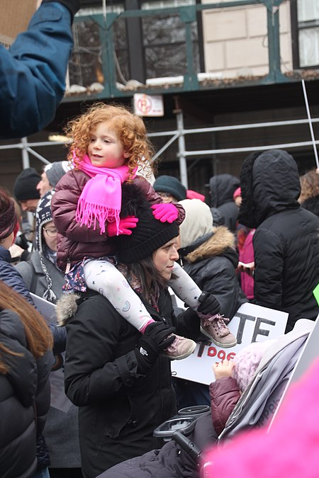 January 2019 Women's Alliance march in NYC (46806264331).jpg
