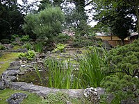 Japanese Garden (Schönbrunn; 'Stone garden' part, Lower pond) 20080613 055.jpg