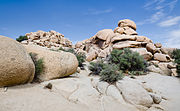 Joschua Tree National Park Rock formation near Barker Dam 2013.jpg