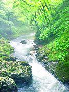 Kaisyaku-river