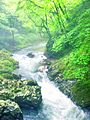Kaisyaku-river.jpg