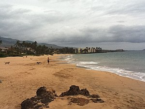 Kihei, Hawaii - Image: Kamaole Beach Park I Maui south view