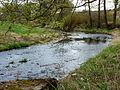 Kamenice (přítok Nežárky) ve Žďáru 01.jpg