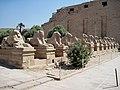 Karnak Tempel Dromos 16.JPG