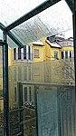 Katzenauslauf auf der Terrasse 25.jpg