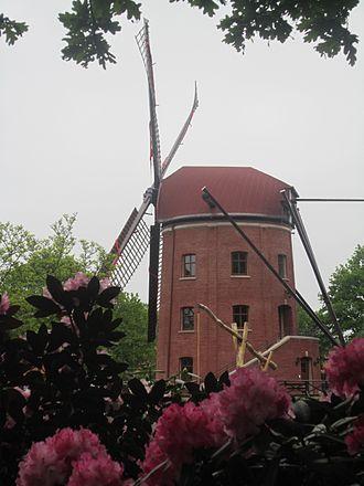 Bad Zwischenahn - Windmill in Kayhausen, the Rügenwalder Mühle