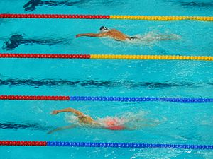 Swimming at the 2015 World Aquatics Championships – Men's 800 metre freestyle - Sun and Paltrinieri swim to medals