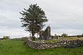 Kilmacrenan Friary W 2012 09 19.jpg