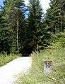 Kilometerstein 18 und nun hinein in den Wald.. - panoramio.jpg