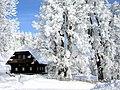 Kloareinisch Winter.jpg